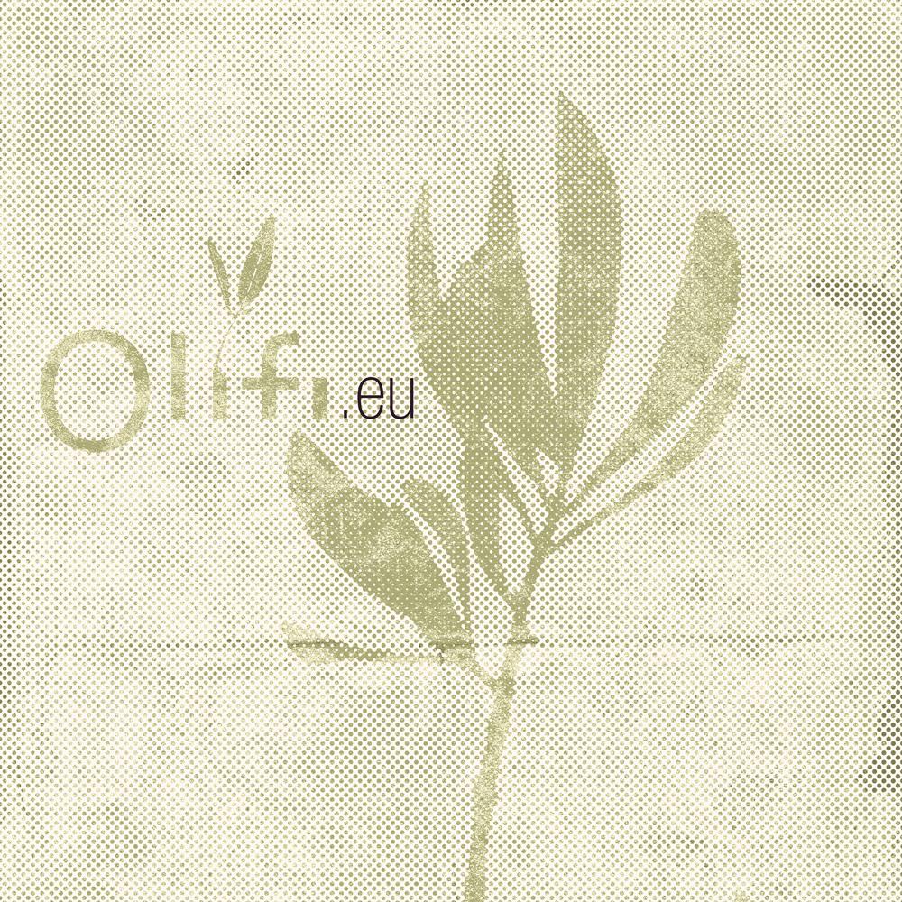 olifi_old_01